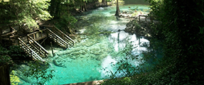 The Springs At Blule Springs State Park
